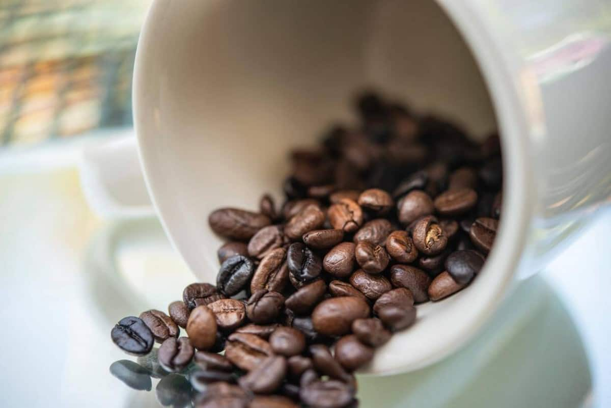 3D Energy Drink Caffeine Content
