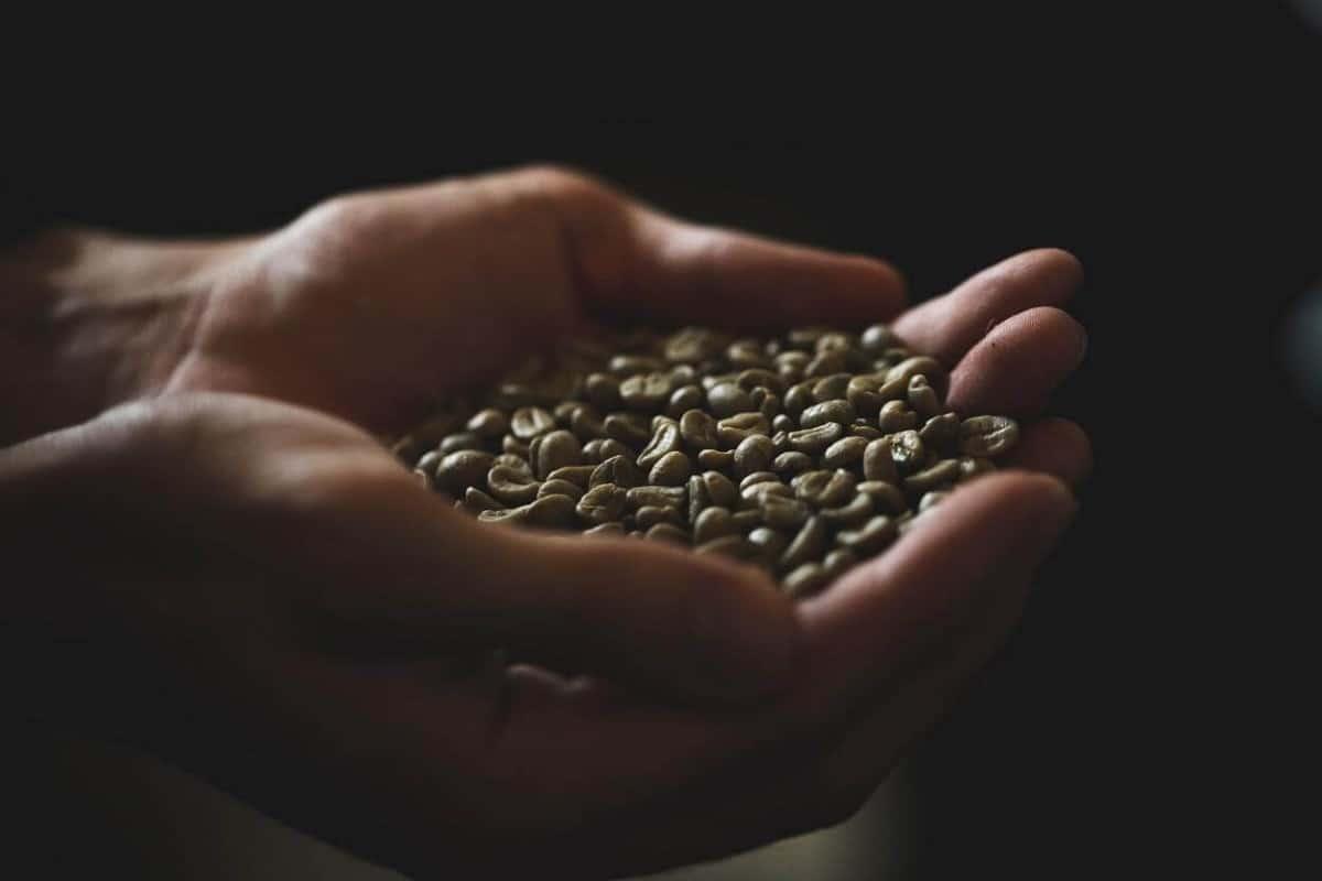 Caffeine improves cognitive performance.